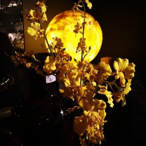 moonlamp